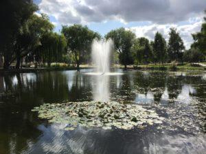 fontanna pływająca