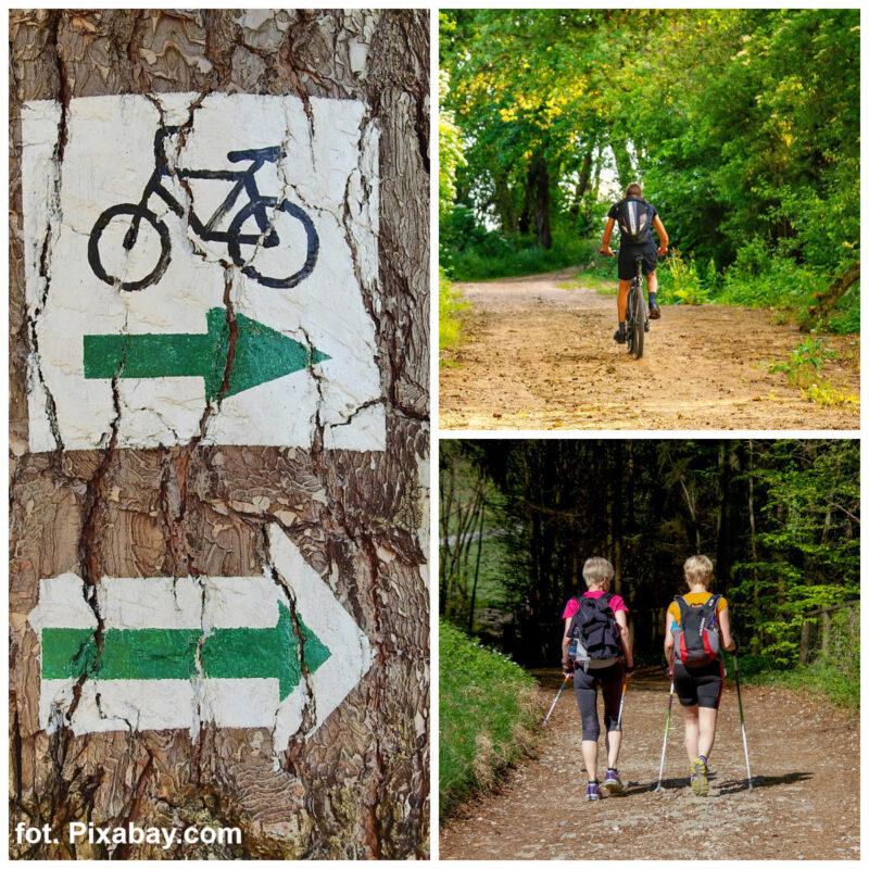 Kto zaprojektuje gdyński szlak pieszo-rowerowy ?
