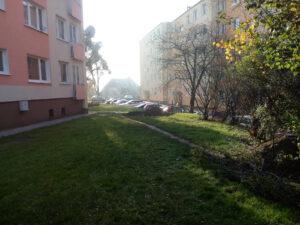 ścieżka przy blokach na Powst. Śląskiego