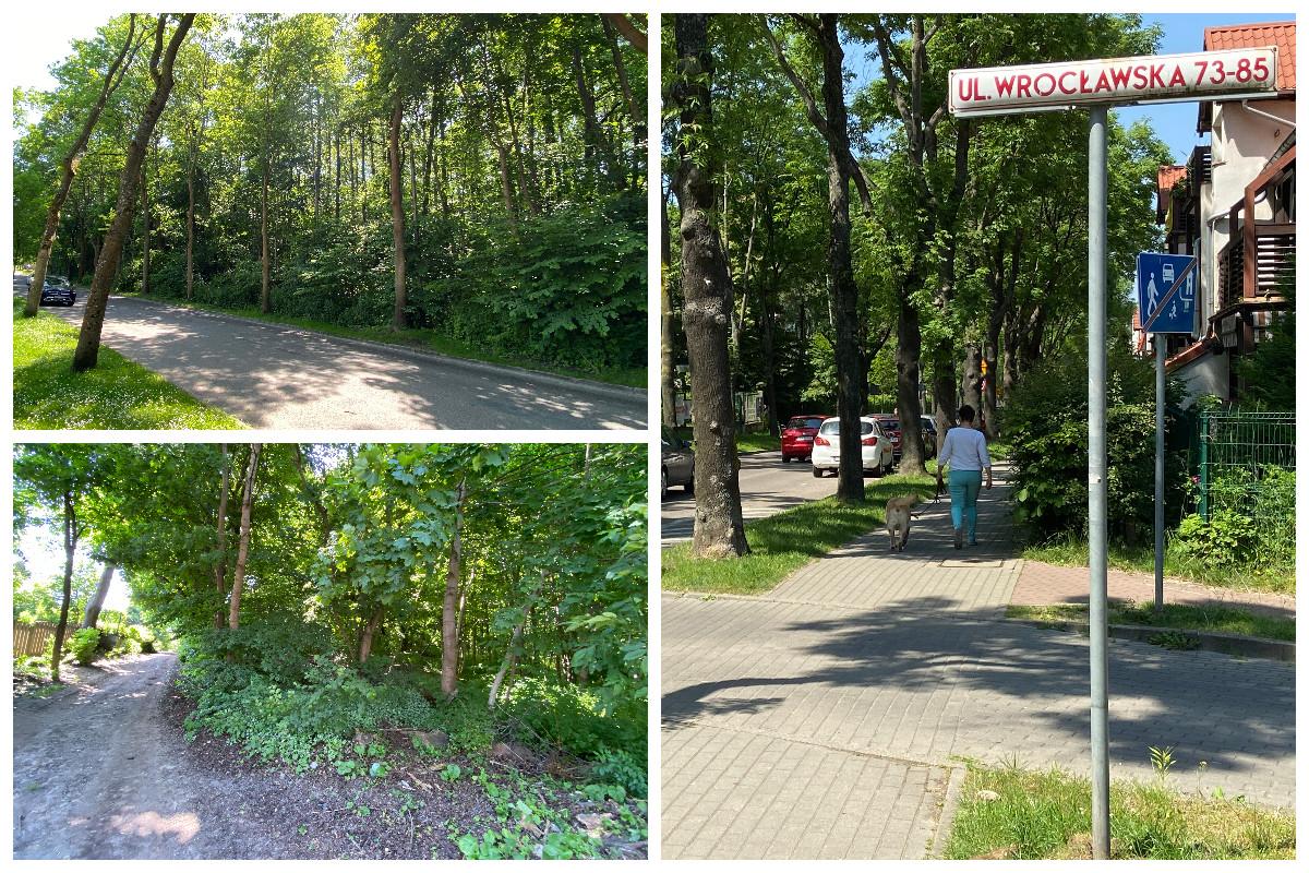 Tak obecnie wygląda teren przy ul. Wrocławskiej // fot.ZDiZ