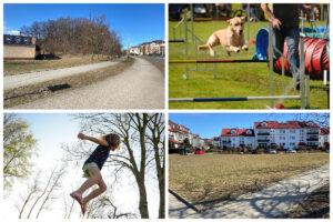 Działki na terenie Dąbrowy, gdzie powstanie wybieg dla psów i park trampolin //fot. ZDiZ, pixabayi