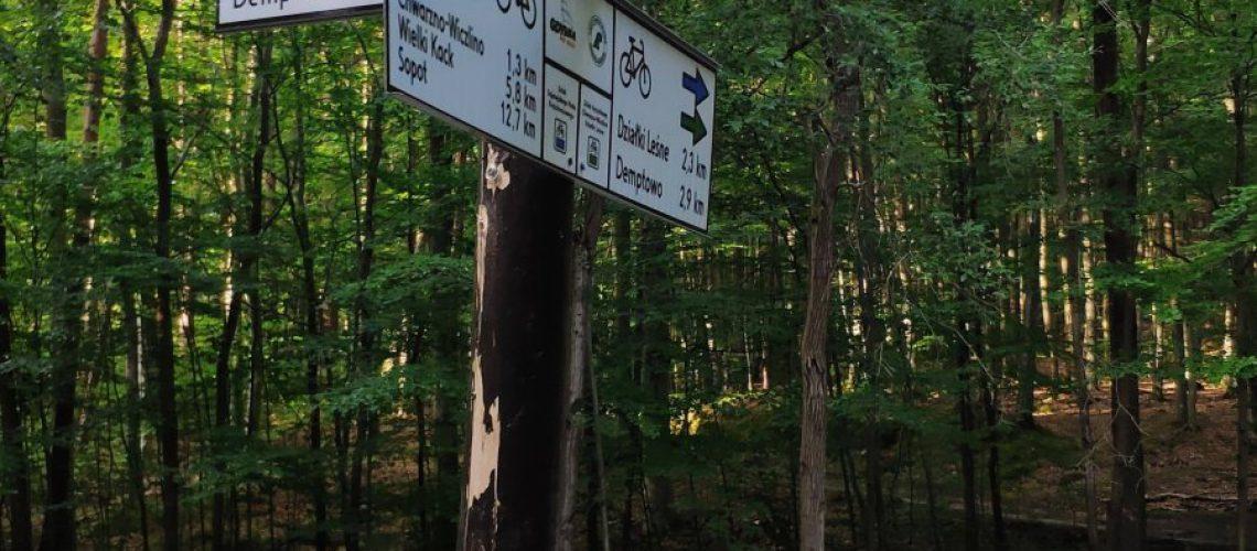 łatwiej rowerem przez las